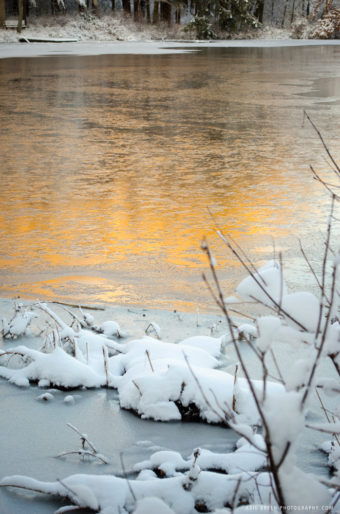 Charles River with glow from morning light, frozen
